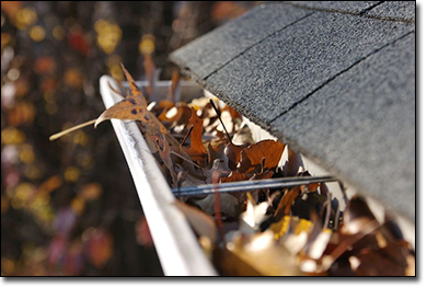 gutter cleaning maple valley landscaping