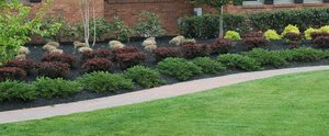 Commercial Landscaping Maple Valley Wa